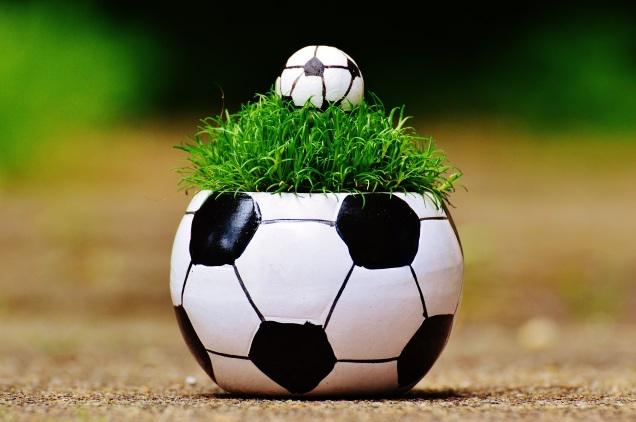 soccer planter